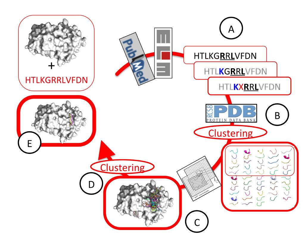 peptides_scaled