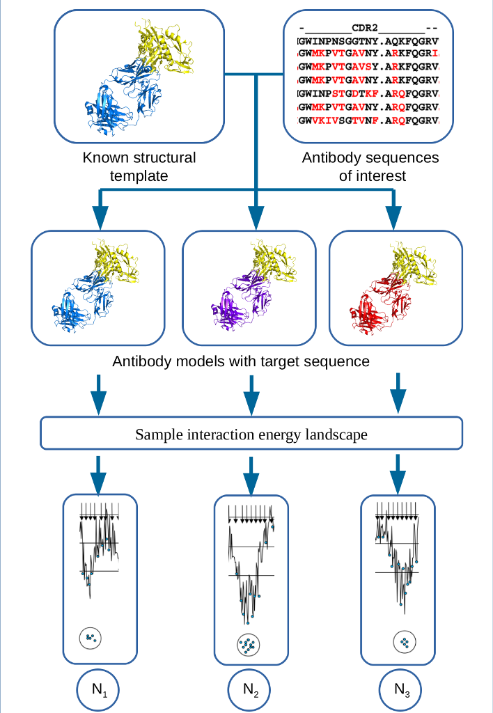 antibody_crop_scaled